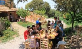 comida grupo